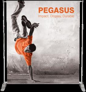 pegasus-2014_131104_hr